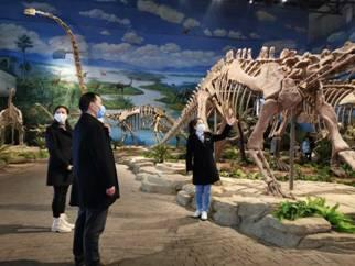 自贡恐龙博物馆恢复开馆的公告